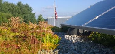 Solar and Green Roof